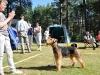S - Bästa unghund