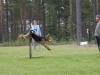 Zenit hoppar